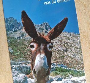 Postkarte mit einem Esel
